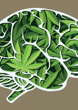 THC and Mental Health Issues